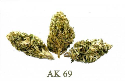 Aka69-leriff