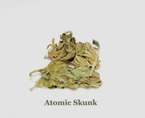 Atomic Skunk